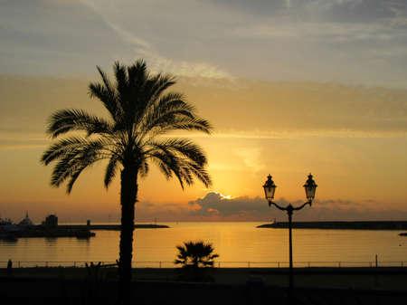seaports: sunrise over the sea and palm Stock Photo