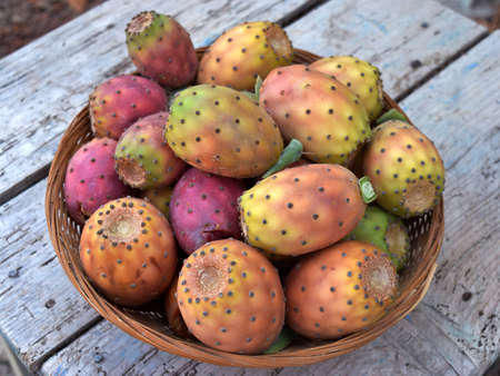 prickly: basket of prickly pears