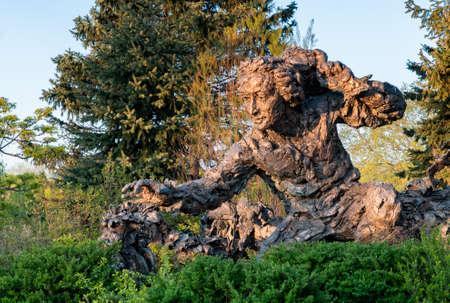 Bronze sculpture of Carolus Linnaeus at the Chicago Botanic Garden Banco de Imagens