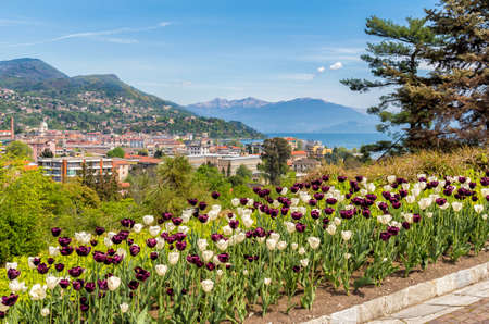 View from the Botanical Gardens of Villa Taranto to Lake Maggiore and Intra Verbania, with tulips in the foreground. Stock Photo