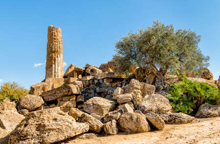 Park of the Valley of the Temples in Agrigento, Sicily, Italy Stock Photo - 89779837