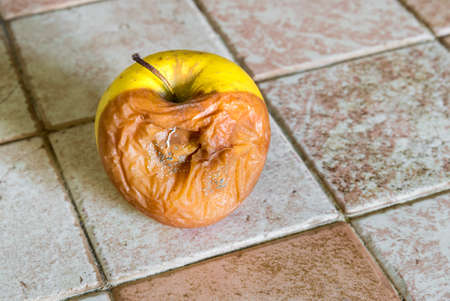 The yellow rotten apple with mildew. Imagens