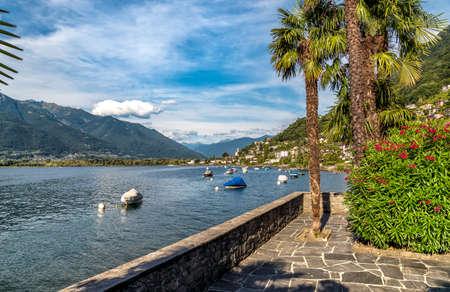 Landscape of Lake Maggiore with mountains and Magadino village in the background from Vira Gambarogno village, Ticino, Switzerland