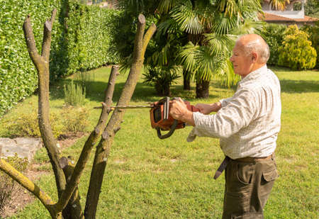 Senior man cutting tree with chainsaw in the garden.