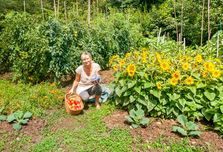 Young woman in the vegetable garden with harvested vegetables on sunny summer day.