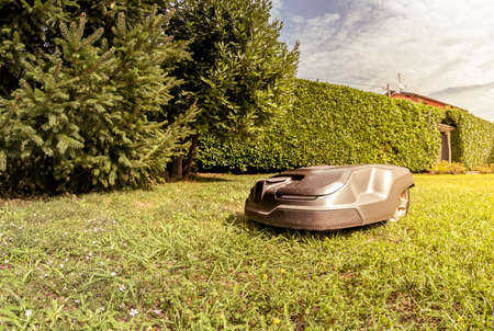 Robotic Lawn Mower cutting grass in the garden in a summer day.
