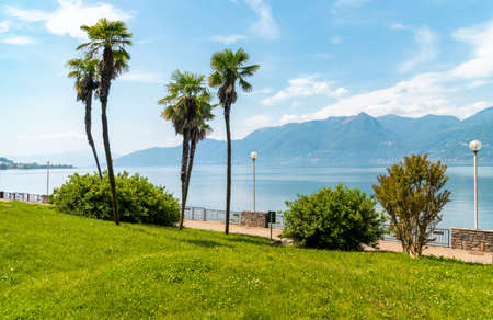 Luino Lakeside promenade with Palm trees on the shore of Lake Maggiore, Lombardy, Italy