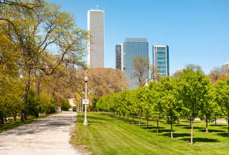 Gardens of Chicago Grant Park with skyscrapers on background, Illinois, USA