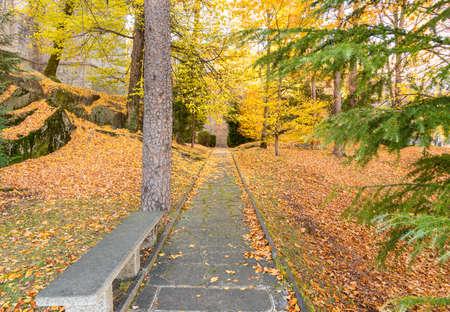 Autumn scene landscape at park of Sacred Mount Calvary of Domodossola, Piedmont, Italy