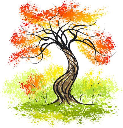 autumn leaves falling: Autumn tree