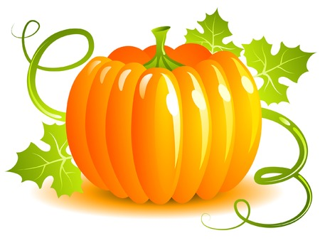 Pumpkin Stock Vector - 7688385
