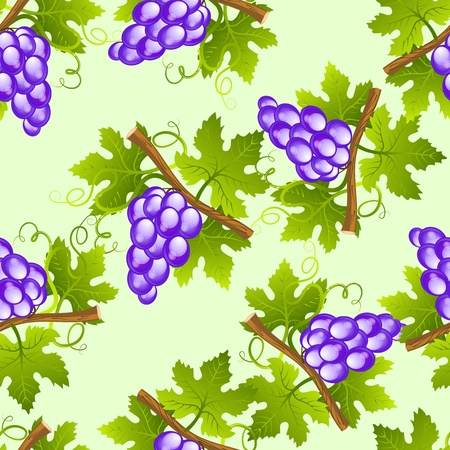 Grape seamless pattern Stock Vector - 12491368