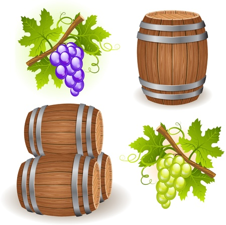 fruitful: Wooden barrels and grape