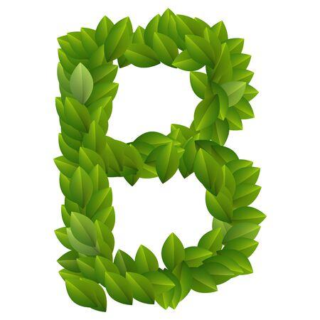 Letter B of green leaves alphabet  Ilustrace
