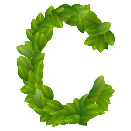 Letter C of green leaves alphabet  Vector