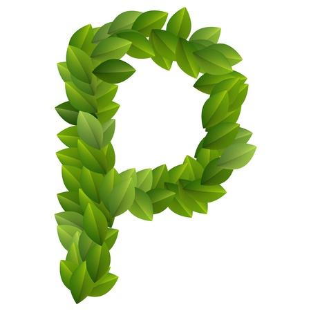 Letter P of green leaves alphabet  Vector