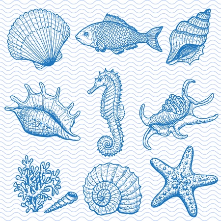 Sea collectie originele hand getekende illustratie