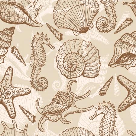 caracolas de mar: Por mar dibujado sin patrón Vectores