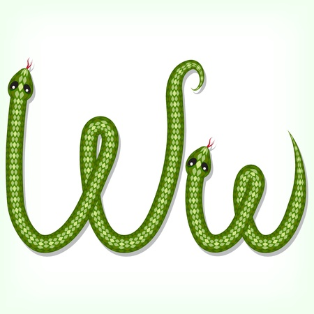 Font made from green snake. Letter W Vector
