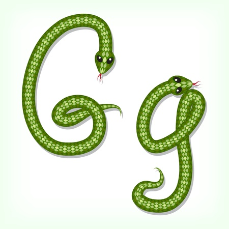 Font made from green snake. Letter G Vector