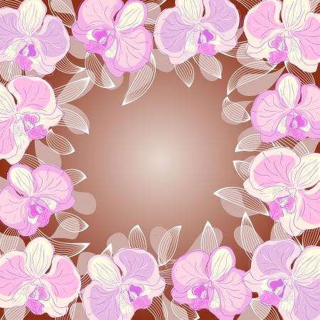 white orchids: orchid frame