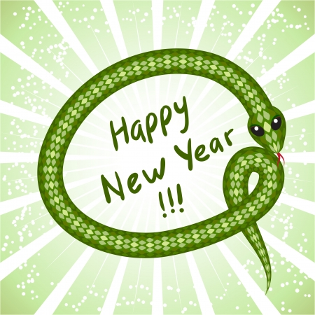 Cute snake  symbol of 2013 year
