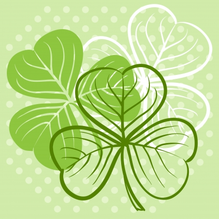 three leaf clover: Three leaf clover illustration Illustration
