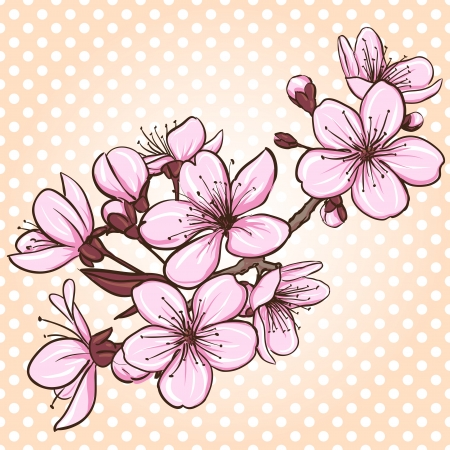 Cherry blossom  Decorative floral illustration of sakura flowers Vector