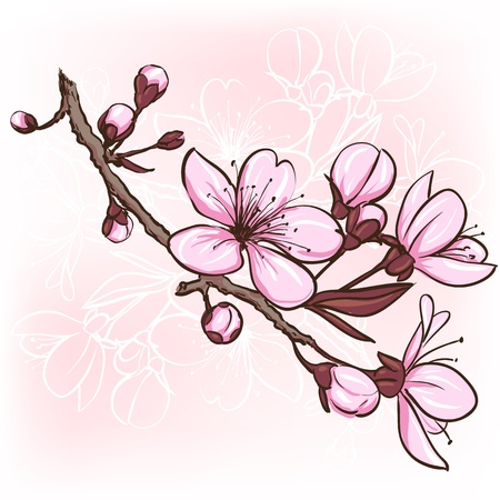桜さくらの花の装飾的な花のイラスト