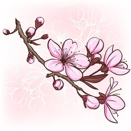 kersenboom: Kersenbloesem Decoratieve bloemen illustratie van sakurabloemen Stock Illustratie