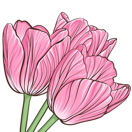 tulip flower: Decorative floral background with flowers of peony Illustration
