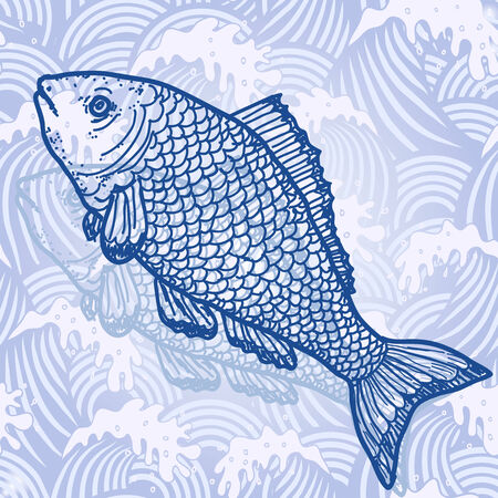 Sea fish. Original hand drawn illustration in vintage style illustration