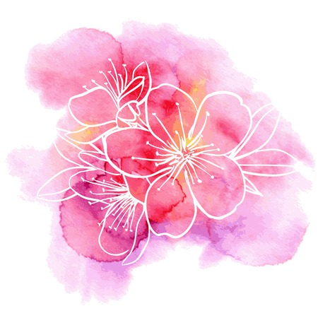 Decorative floral illustration of cherry flowers on a watercolor background