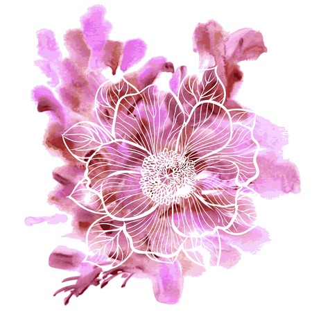 tree peony: Decorative floral illustration of peony flower on a watercolor background