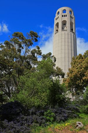 coit tower: This is the Coit Tower in San Francisco.