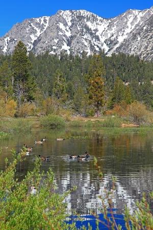 Landscape of Lake Tahoe in California Stock Photo - 9800495