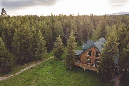 Capanna di legno con travi in legno in mezzo a una foresta lussureggiante