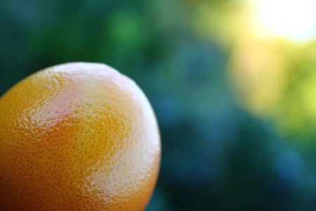 nem: The photo a grapefruit in front of a green and yellow background NEM Stock Photo