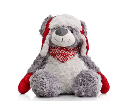 Toy teddy bear isolated on a white background