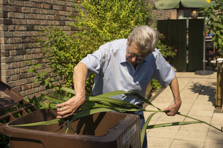 composting: Senior man standing in his paved backyard cutting clippings that he has pruned off shrubs and plants in his garden for composting in a bin