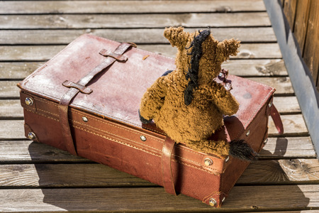 plush toy: Rear view of worn out horse plush toy sitting on old red leather briefcase over wooden deck