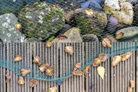 Close up view of green netting over large rocks next to a wooden path with dried leaves attached, overhead view