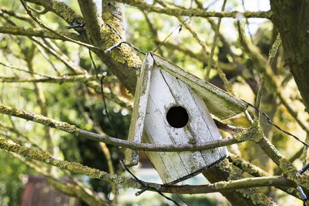 Alter selbst gemachter hölzerner Vogelnistkasten, der schräg auf Niederlassungen in einem Baum im Garten eines Hauses in einer nahen hohen Ansicht stillsteht Standard-Bild