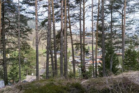 Kleines Dorf am Rande eines Waldes in den Bergen durch einen Pinienwald gesehen