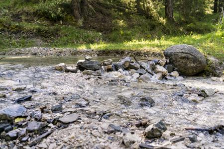 Steinverdammung über Gebirgsstrom im Wald