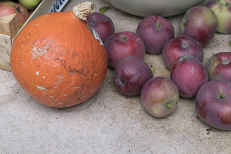 Small pumpkin and red apples from the domestic garden or local market. Viewed in close-up from high angle