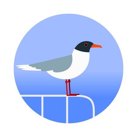 mew: Seagull on the handrails. Illustration