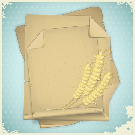 Grunge paper with ear of wheat  on vintage background - vector illustration Vector