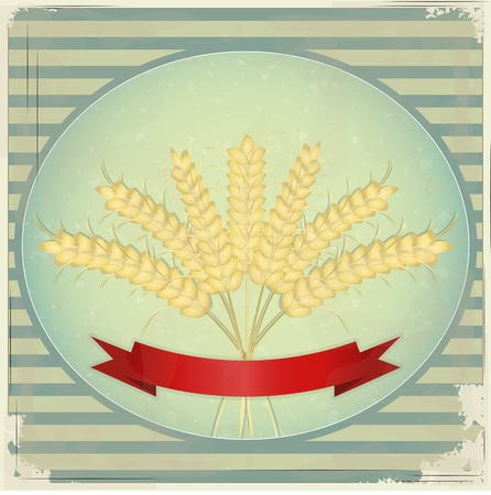 burnt paper: Vintage Label - Ears of wheat on blue retro background - vector illustration