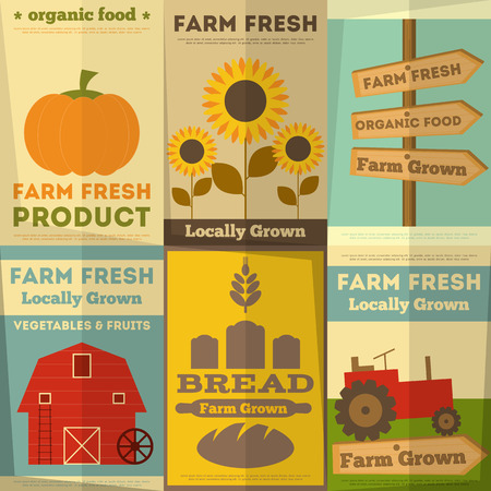 produce product: Organic Farm Food Posters Set. Retro Placard in Flat Design Style. Vector Illustration.